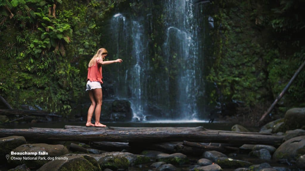 great otways national park Commercial video production
